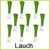 lauch-beet