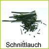 schnittlauch-beet